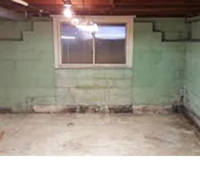 Mold in finished Basement Lowell, MA  Before