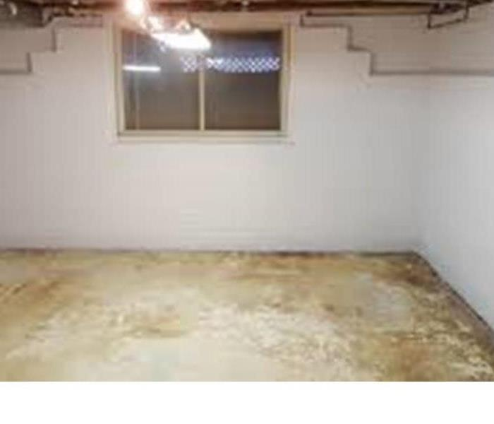 Mold in finished Basement Lowell, MA  After