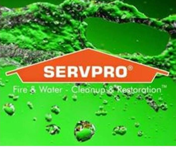 Building Services SERVPRO of Lowell offers Commercial Janitorial Services