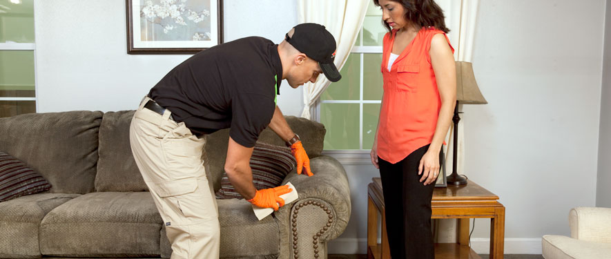 Lowell, MA carpet upholstery cleaning